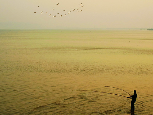 china sunset sea net birds silhouette gold golden bay fisherman october candid