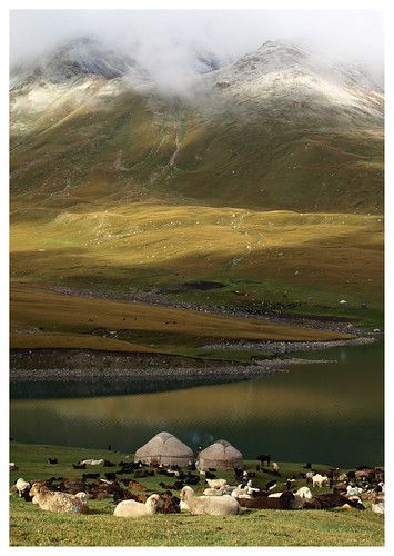 morning mountain green yellow fog clouds sunrise landscape sheep yurt centralasia kyrgyzstan nomads kolukok