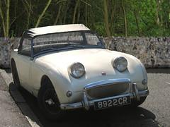 triumph tr3(0.0), austin-healey 3000(0.0), sports car(0.0), automobile(1.0), vehicle(1.0), antique car(1.0), austin-healey sprite(1.0), classic car(1.0), vintage car(1.0), land vehicle(1.0), convertible(1.0),