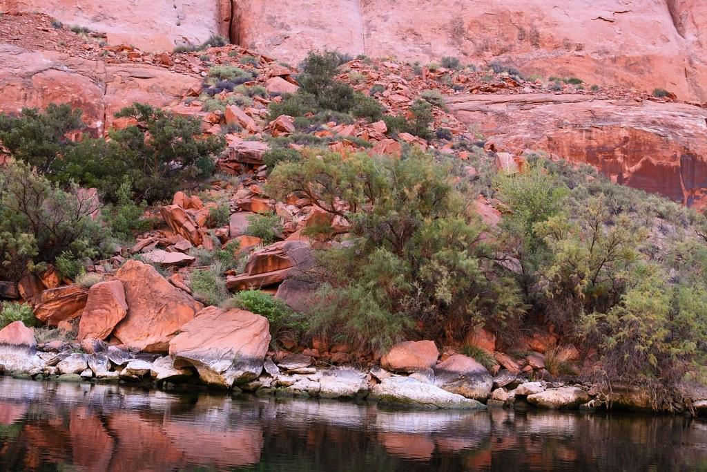 Colorado River Discovery >> Colorado River Discovery Sep 2010 Xin Wang Flickr