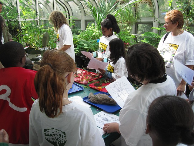 Green Horizon students learn basic botany and plant propagation.