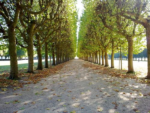 Meudon dalla vita di Louis-Ferdinand Céline