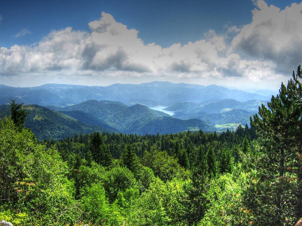 Paisagem no Parque Nacional Tara