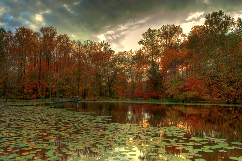 park trees sky fallleaves fall water outdoors pond nikon fallcolors hdr centreville 2010 d90 centrevilleva hdrimage walneypond skyfall nikond90 reflectioncloudy