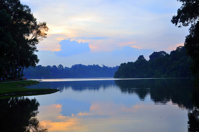 Macritchie Reservoir Park Singapore Flickr Photo Sharing