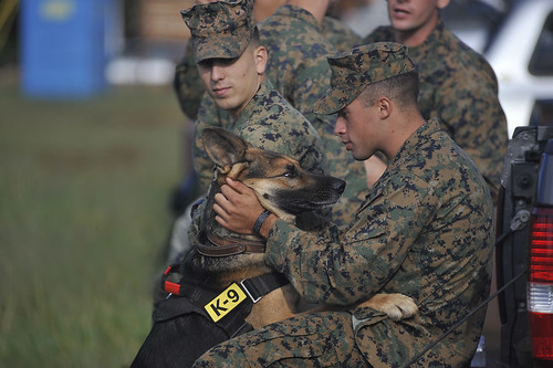 5221660702 b468d009f6 A Marine embraces his military working dog