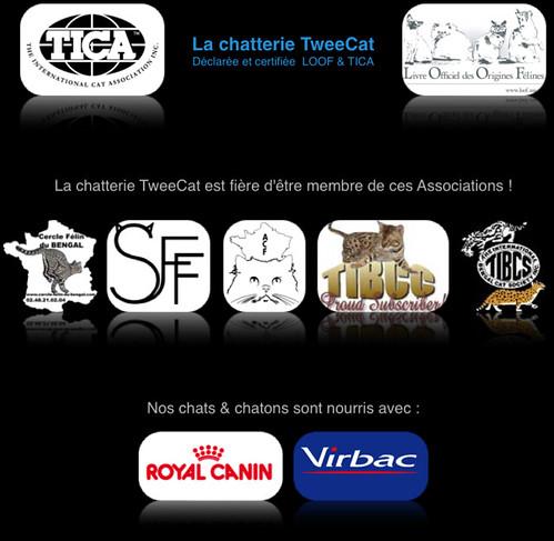 Logo Tica, Loof, Cercle félin du Bengal, SFF, ACF, TIBCC, TIBCS, Virbac et Royal canin