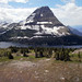 Best of Montana '10