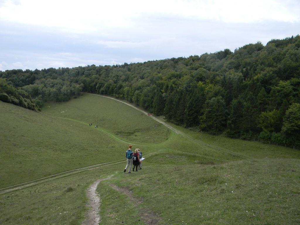 Descent - Arundel Park Amberley Circular (inc Arundel)