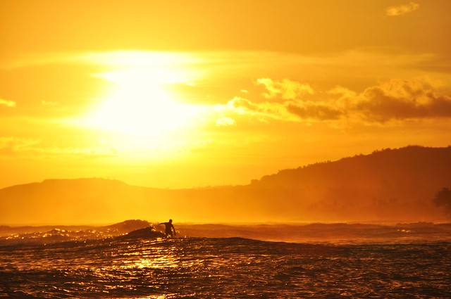 surfing in the sunset
