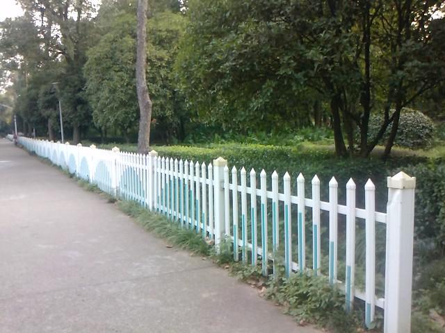 西区的白栅栏