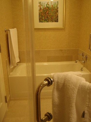 glass bathrooms hotels