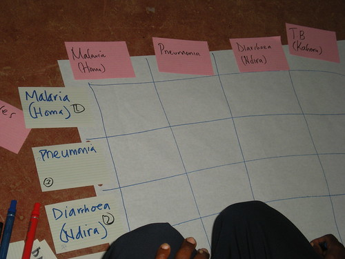 2010 Training in One Health / Participatory Epidemiology for Pilot Study in Western Kenya