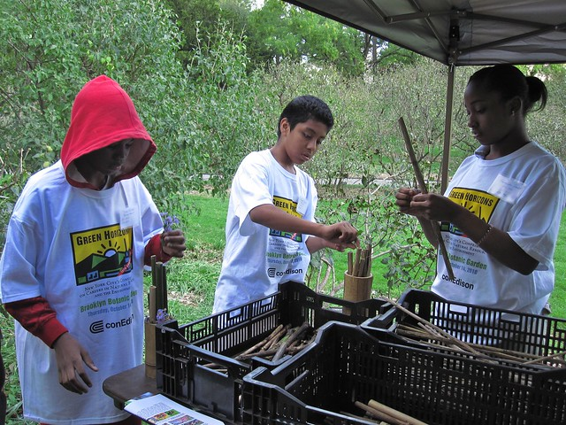 Green Horizon students build bees nests with the Great Pollinator Project.