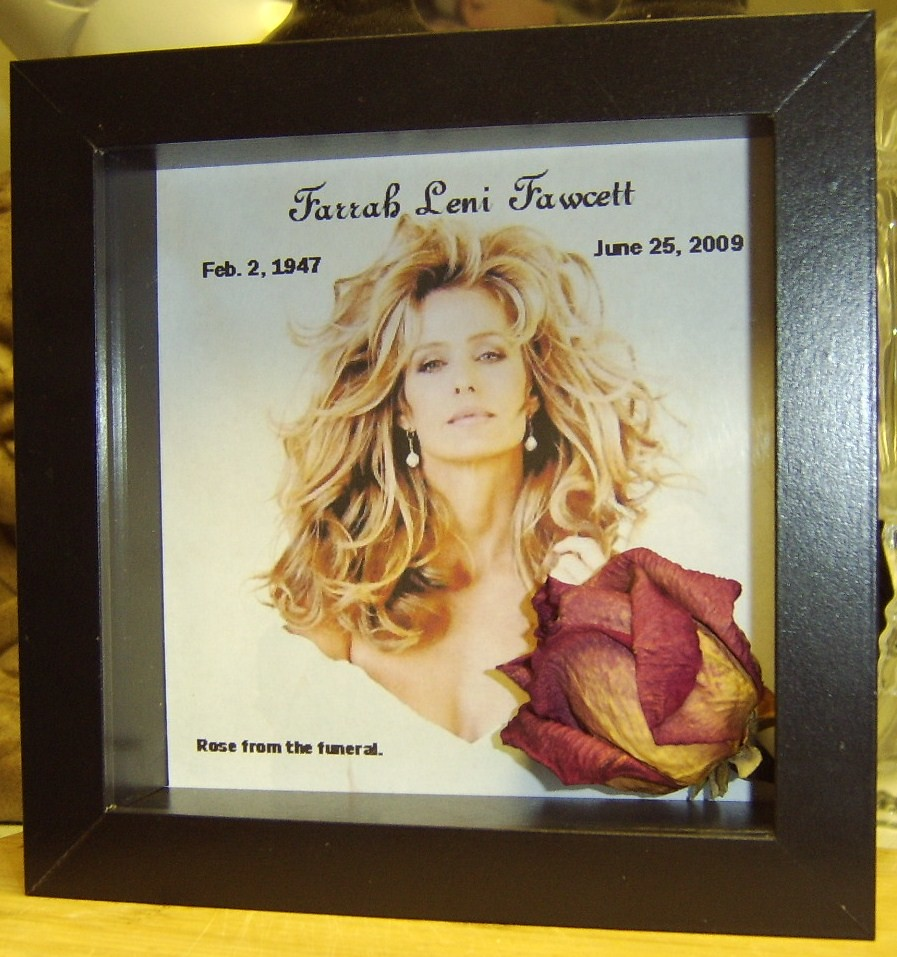 Shadowbox to display the rose i got from farrah s funeral last year