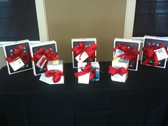iPad Door Prizes (and Flip Cameras) at MiCon10