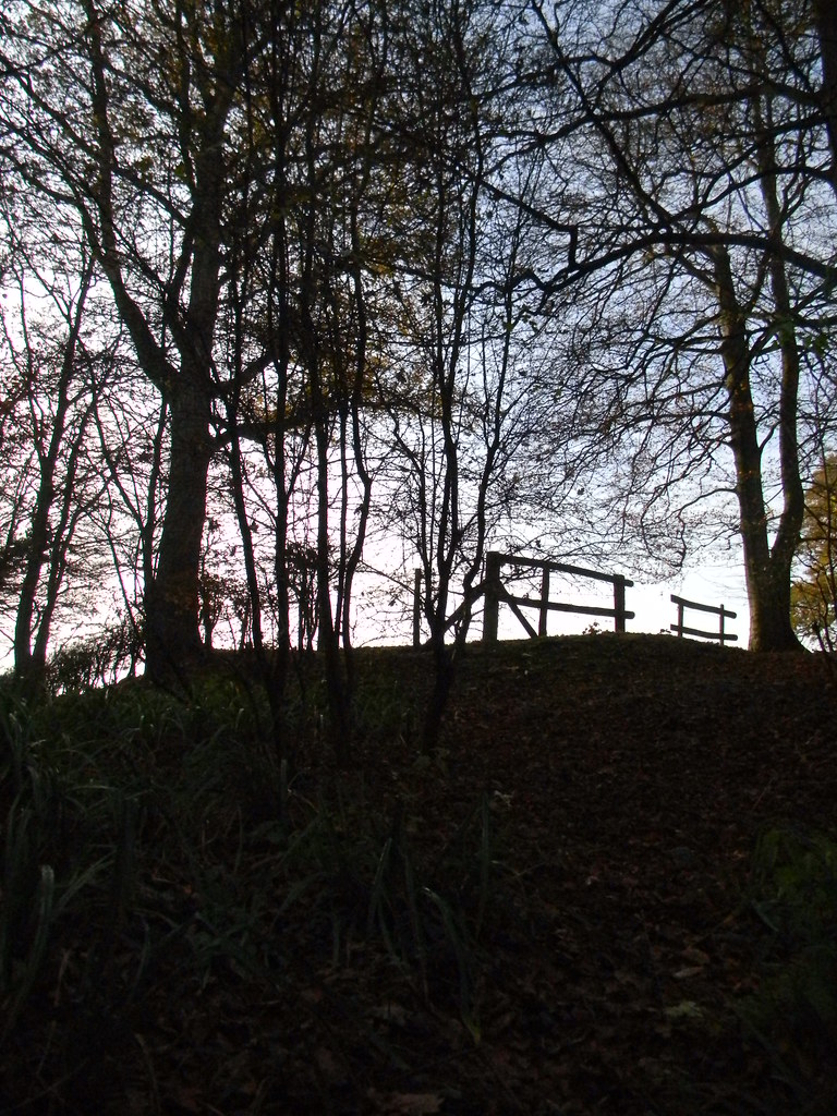 looking up Ockley to Warnham