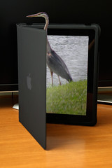 Heron iPad Framebreak