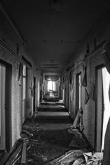 hallway apocalypse