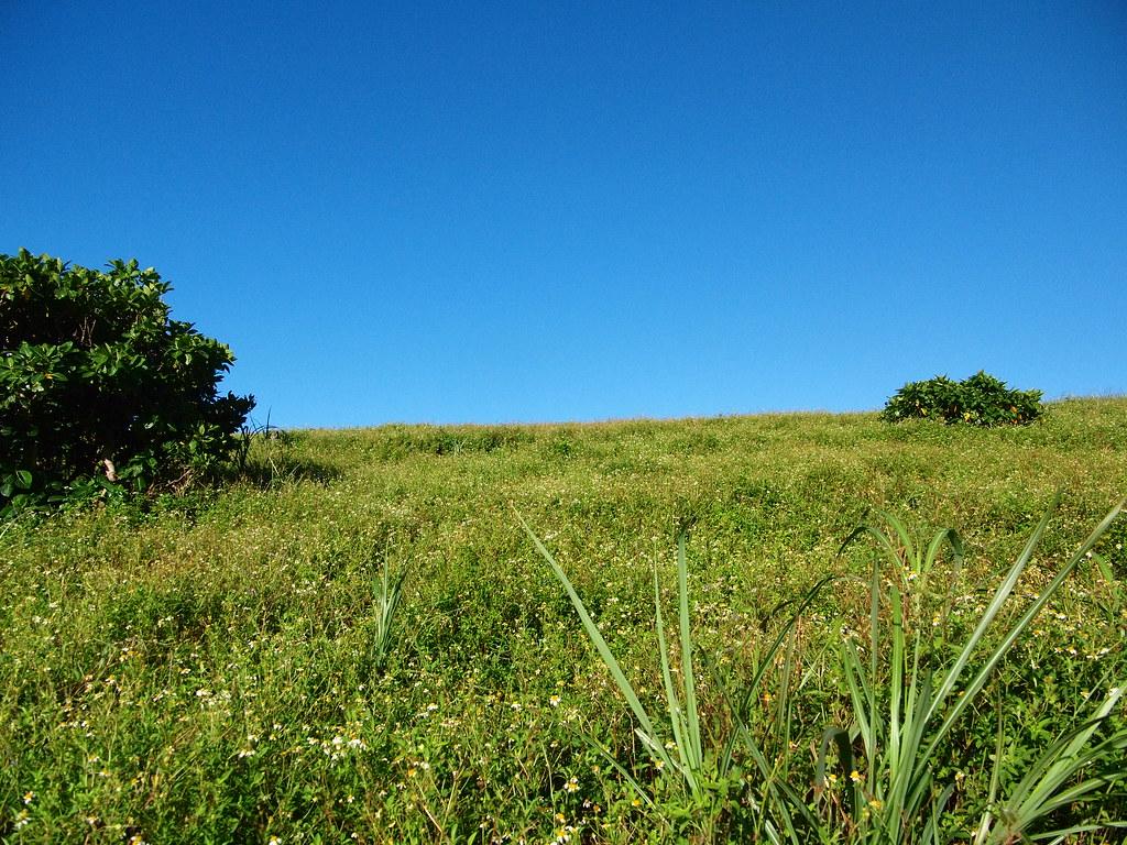 蘭嶼 Day 5 青青草原