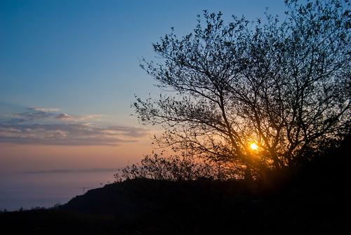 españa tree sunrise landscape photo nikon asturias paisaje amanecer árbol oviedo esp singletree lonelytree naranco árbolsolitario nikond3000
