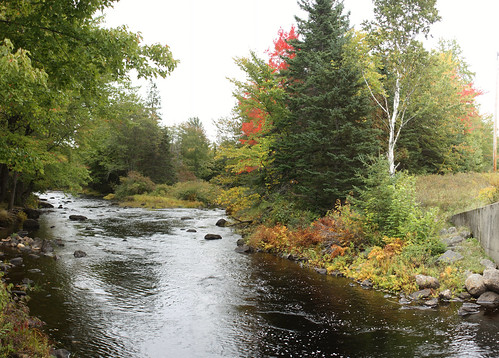 autumn maine crawford restarea rt9 eastmachiasriver