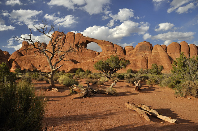 5038378873 c68b27e0dc z Top Ten Things to see in Arches National Park