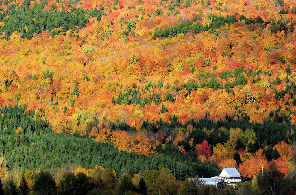 Les couleurs du Québec - The colors of Québec