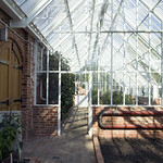 The interior of a Hartley Custom Made Lean-to greenhouse