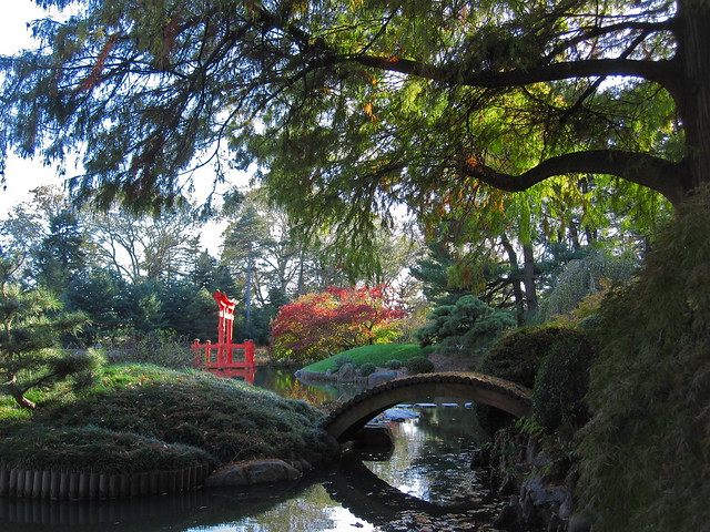 Early November in the Japanese Hill-and-Pond Garden offers visitors many colorful views. Photo by Rebecca Bullene.