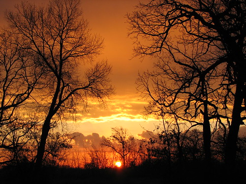 morning trees orange sun wisconsin clouds sunrise 1111 mukwonago colorphotoaward