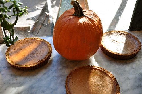 Seasonal Pie