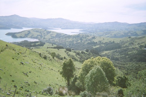 Looking down to Akaroa Harbour, Banks Peninsula, Canterbury, New Zealand