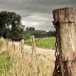 Nadie volverá a cerrar la cerca