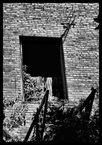 window wall blackwhite alabama wetumpka