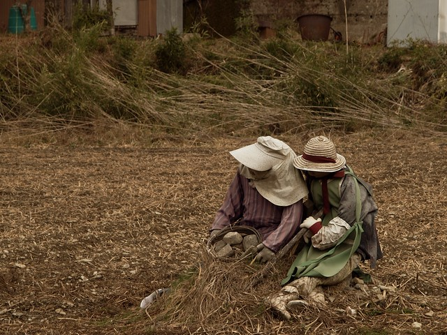 Tired Scarecrows