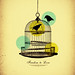 Freedom to Love by williansanfer