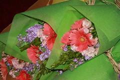 flowers 1 108