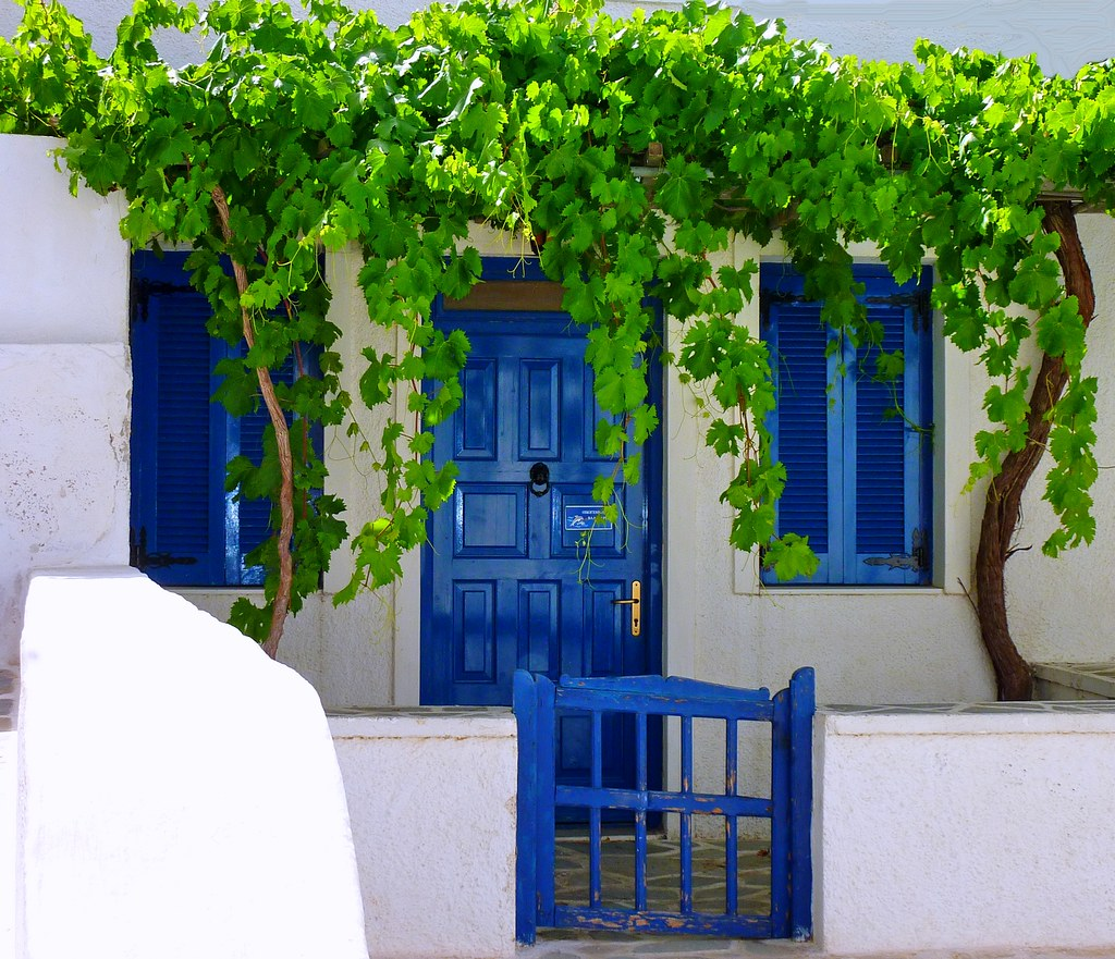 Facade with vine