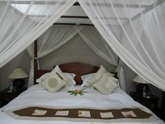 mosquito net, room, bed sheet, bed, interior design, bedroom,