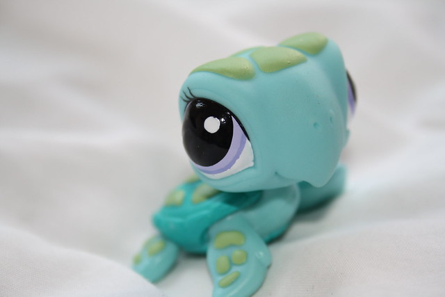 littlest pet shop sea turtle portrait flickr   photo
