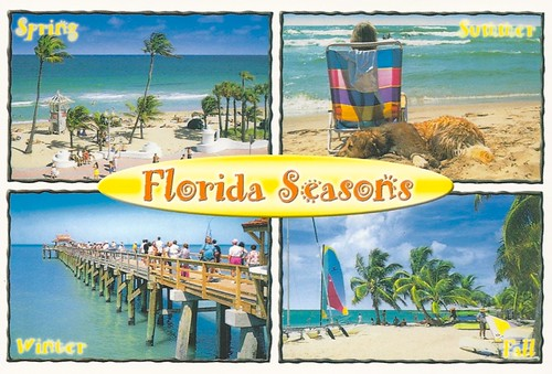 Image result for florida seasons