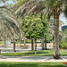 Small photo of Zabeel Park