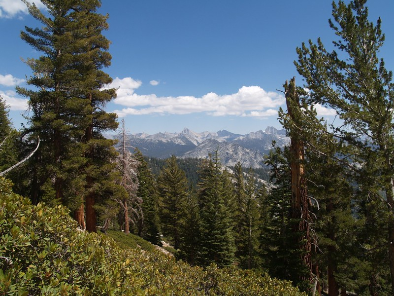 Looking east toward the Sierra Crest, as we near the top of the Copper Creek Trail