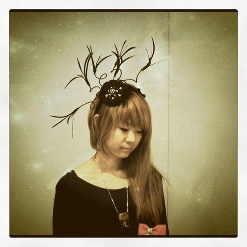 髪飾り - 無料写真検索fotoq