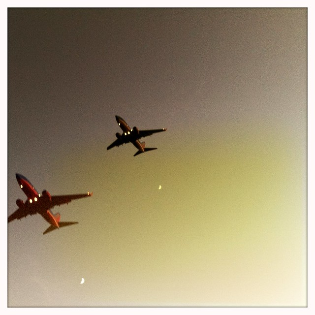 Wingmen (Hipstamatic Contest Entry)