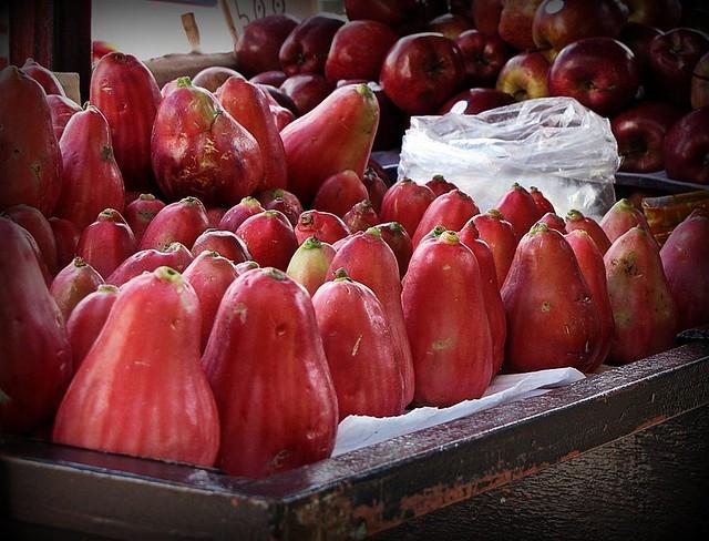 Manzana de agua   Flickr - Photo Sharing!