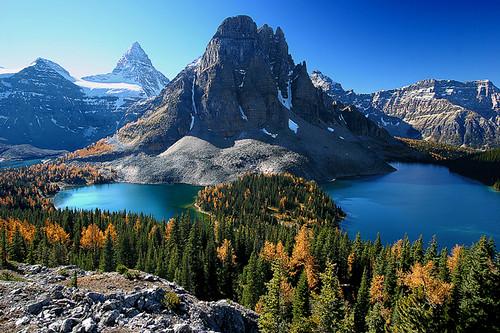 canada rockies bc britishcolumbia mtassiniboine ayrc0401