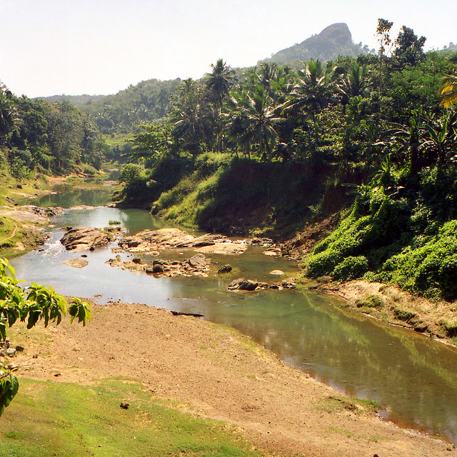Kerala Style Landscape Design Photos