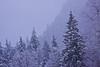 Snowy Slendor 2
